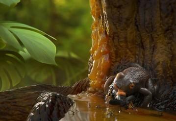 Лягушка Electrorana limoae в представлении художника. Изображение: Damir Martin / floridamuseum.ufl.edu