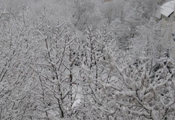 Хуторянин вызвал милиционеров, чтобы они проложили путь через снег. Источник фото: Telegraf.by