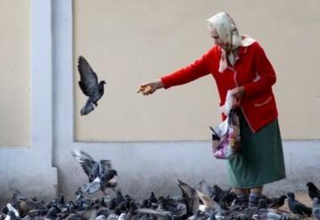 Белорусские пенсионеры живут хуже таджикских и кыргызских?