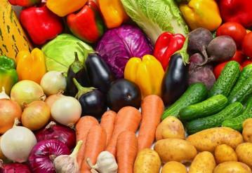 Семена овощных культур: особенности выбора и обработки